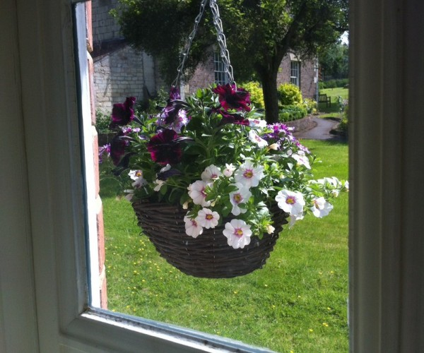 Larger Cottage Window